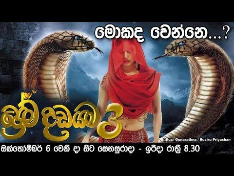 Download Sinhala Prema Dadayama Xxx Mp4 3gp Sex Videos