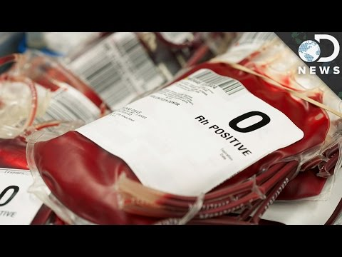 Why Do We Have Different Blood Types?