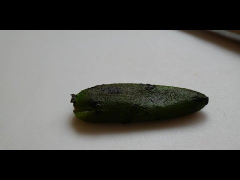 How to roast a Pepper - Roasting a pepper on the stove and removing the skin