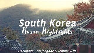 Download BUSAN, SOUTH KOREA - Travel Video