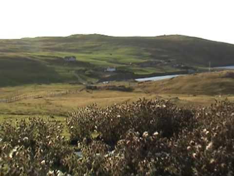 Shetland scenery