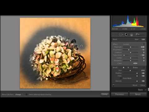 Converting Images to B/W in Lightroom 3