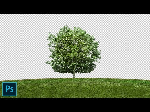 Channel Masking in Photoshop cs6 Using Alpha Channel in Hindi.