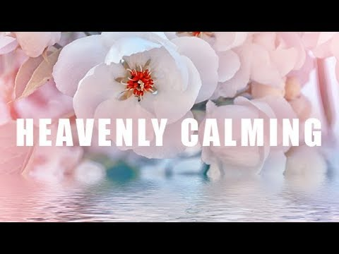 Heavenly Calming Music for Sleep Meditation, Relaxing Sleep Music, Gentle Sleep Music 🕙10 Hours