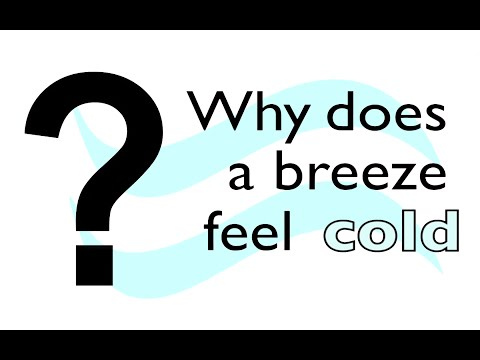Why does a breeze feel cold?