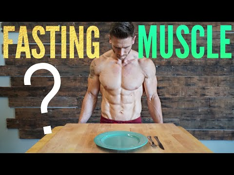 Intermittent Fasting & Muscle Loss: Why Fasting Does Not Cause Muscle Loss