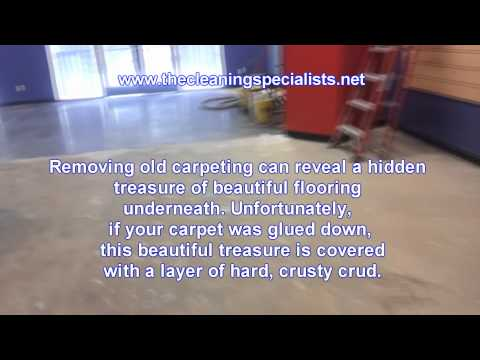 Glue removal from carpet (concrete or hardwood floor glue removal)