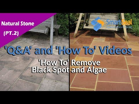 (Pt.2) 'How To' Remove Black Spot & Algae Without Intense Pressure Washing