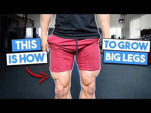 THIS IS HOW I GREW BIG LEGS |  Full Leg Workout
