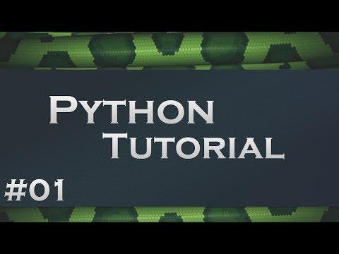 Python #1 - Die Grundlagen