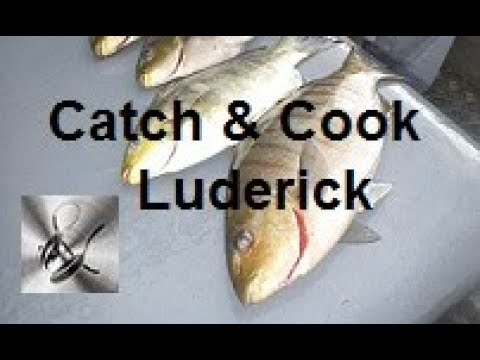 Catch & Cook Luderick | The Hook and The Cook