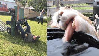 Download Meanwhile, Back on The Farm: Farm Fails   FailArmy Video