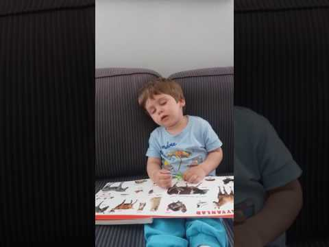 Baby fall asleep while reading