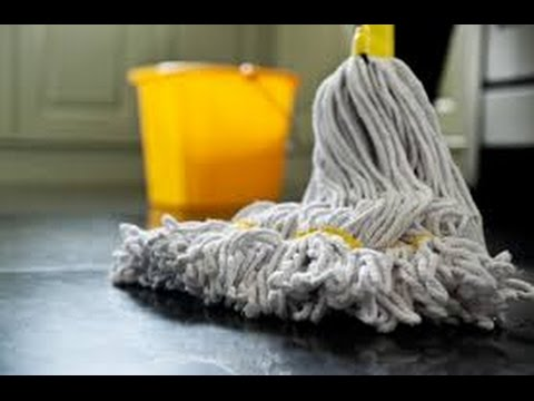 Janitorial Services and Cleaning Supplies: Government Procurement Analysis