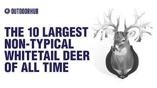 The 10 Largest Non-Typical Whitetail Deer of All Time