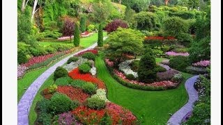 Download Garden Ideas from Pinterest   it's amazing what you can create in your garden Video