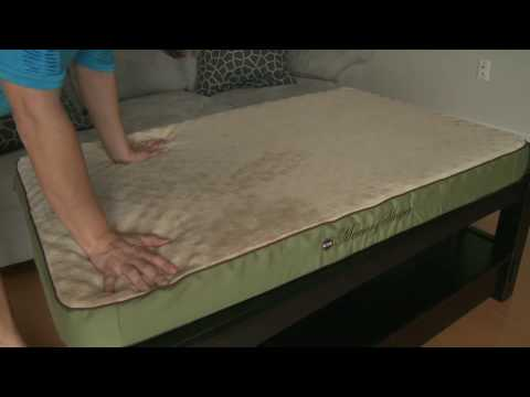 Dog Bed Review - K&H Memory Foam Sleeper - PremierDogSupplies.com