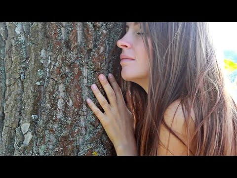In Australia Trees Have Email and People Write Love Letters to Them...