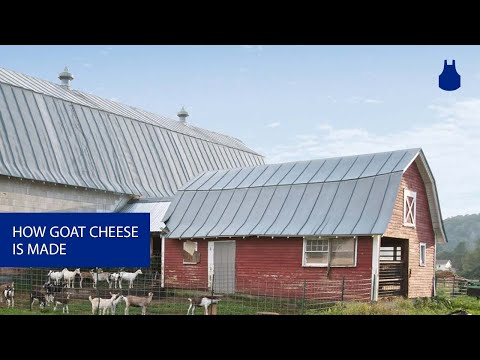 How Great Goat Cheese Is Made