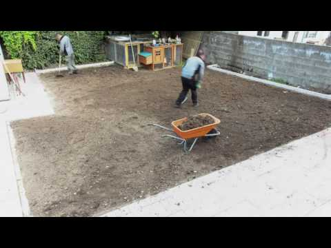 How to put down lawn turf by The Lawn Turf Farm