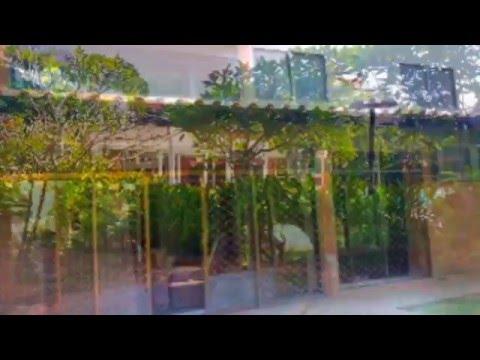 Loyang Valley - Spacious, Lush  & Quiet