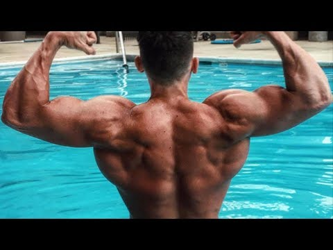 How To Get a Bigger Back! (Calisthenics) Bar Brothers