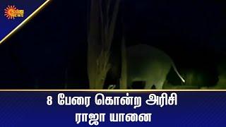 வனத்துறைக்கு சவாலாக இருக்கும் அரிசி யானை   Tamil News Today   Today News   Sun News