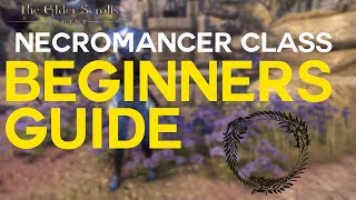 The Ultimate Guide to PvE Necromancer Tank | The Elder