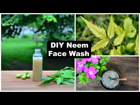 DIY Purifying Neem Face Wash That Removes Pimples, Lightens Acne Scars & Dark Spots !!!