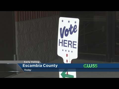 Florida Primary Early Voting