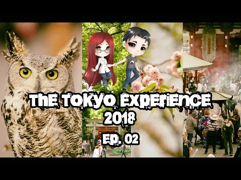 The Tokyo Experience - Ep.02 - Passeggiata tra i templi fino ad Asakusa - Vlog