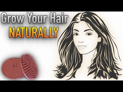 Scalp Massager to Grow Back Hair Naturally – Avoid Quick-Fix Hair Loss Treatments! | Tutorial