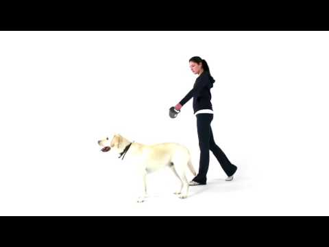 How does the Retractable Tape Leash work?