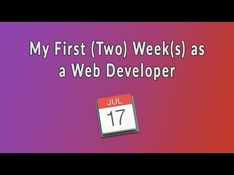 My First Two Weeks as a new Web Developer | Observations & Experiences in my new job