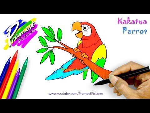 Cara Menggambar Burung Watch Download 4k Movies And Videos