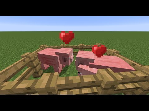 Minecraft PE tutorial: how to breed animals