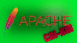 Apache CGI BIN C programing tutorial