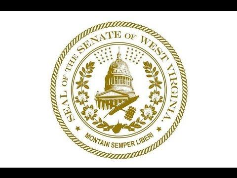 WV Senate - Senators Vote For Resolution Calling For Article 5 Convention
