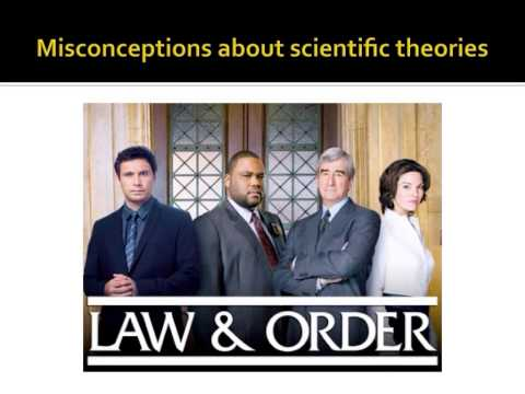 Scientific hypotheses, theories, and laws