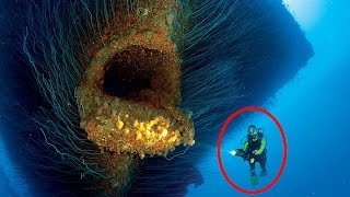 15 Most Shocking Underwater Discoveries Caught On Camera
