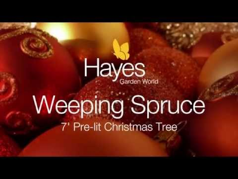 National Tree Weeping Spruce 7 ft Prelit
