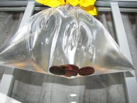 Get Rid of Houseflies - Pennies in Bag