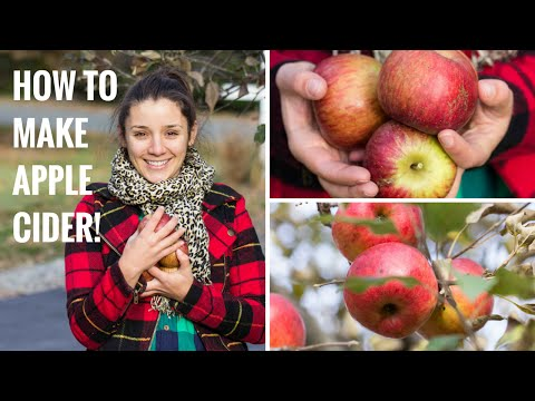 How to Make Apple Cider ☀ Vermont Travels