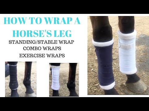 How to Wrap A Horse's Leg (Pony Club Way) | Stable/Standing, Eskadron Combo, Exercise Wrap