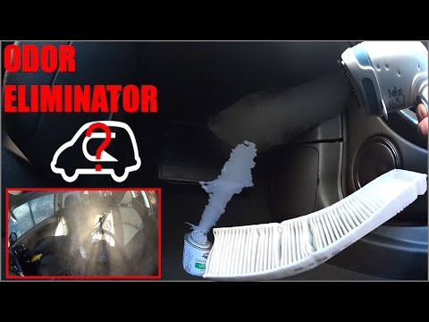 How to Eliminate Any Odors from your Car Interior | Complete Guide