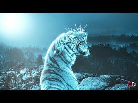 Tiger on Mountain Photoshop Manipulation