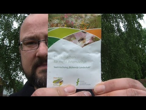 2000 Abonnenten-Giveaway-Spezial/ Nützlingswiese