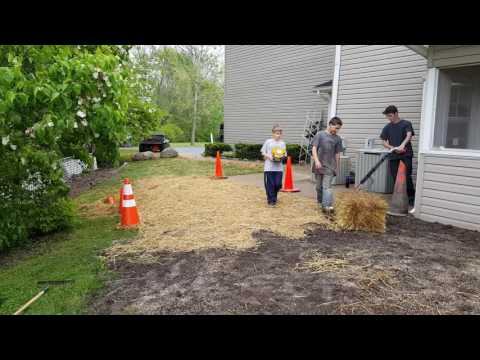 2016.05.12 -  Planting grass seed with straw