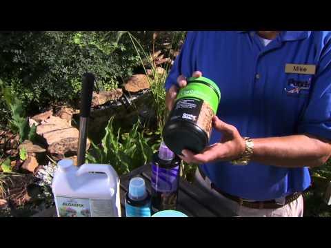 Water Garden Algae Control