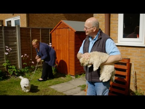 Puppy playtime - Choose the Right Puppy for You: Episode 1 Preview - BBC Two
